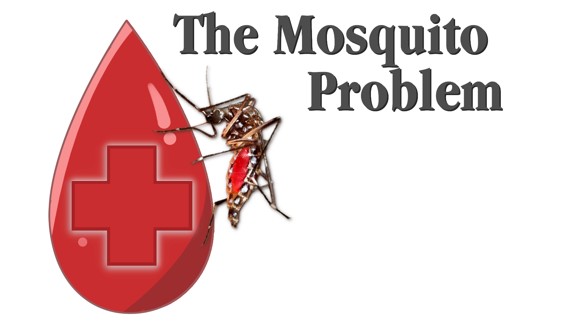 "Mosquito sucking blood with the title, ""The Mosquito Problem"""